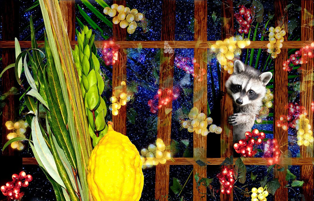 Why Sukkot Is the Most Magical Holiday of All