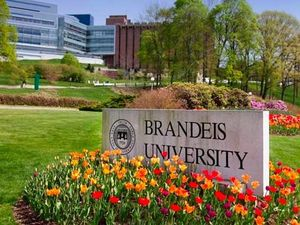 Pictures of Brandeis Students, Professors Uploaded To White Nationalist Website