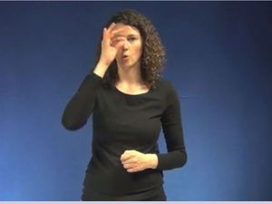Sign Language Group Defends Using Hooked Nose Gesture For 'Jew'