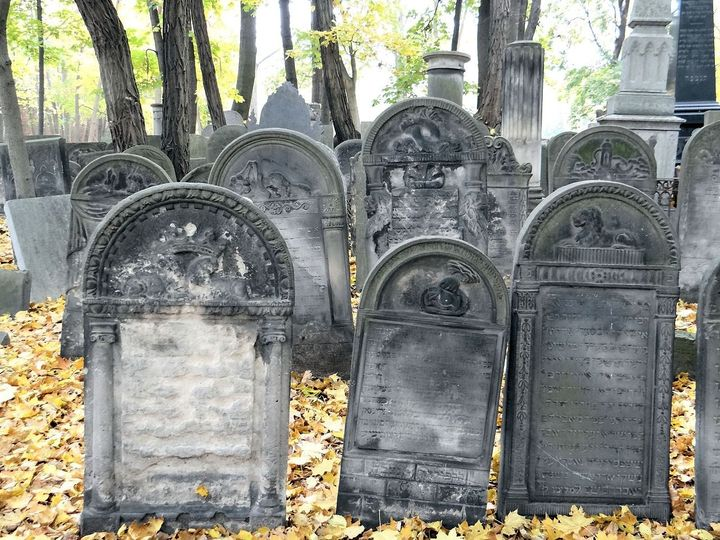Image result for old jewish cemetery split images""