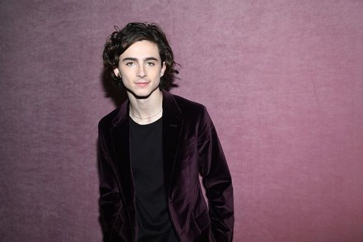 Timothée Chalamet to portray Bob Dylan in upcoming biopic