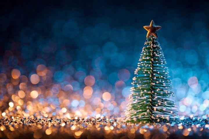 Jews Christmas Trees.Do Jews Put Up Christmas Trees The Forward